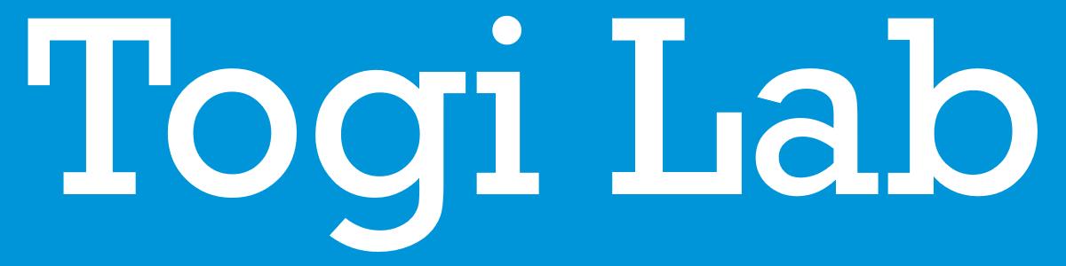 Togi Lab